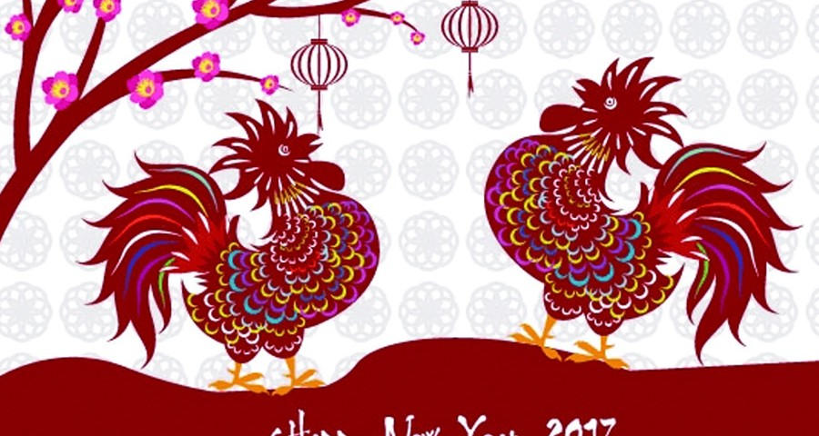 Tet Dinh dau 2017
